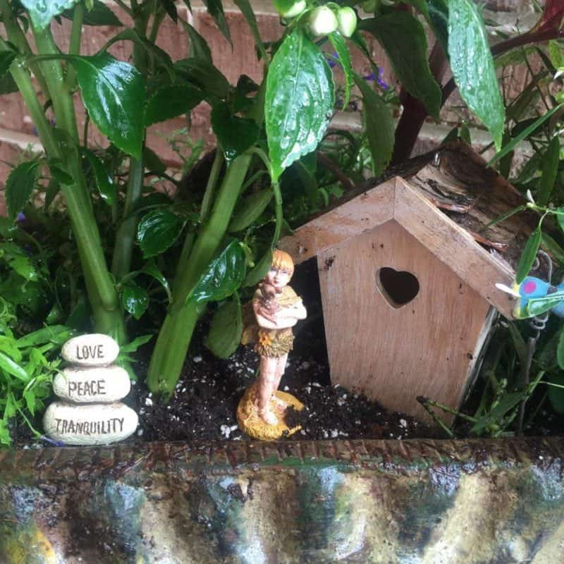 Adorable Affordable Fairy Flower Garden