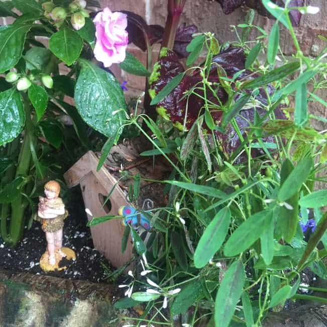 Adorable Affordable Fairy Garden