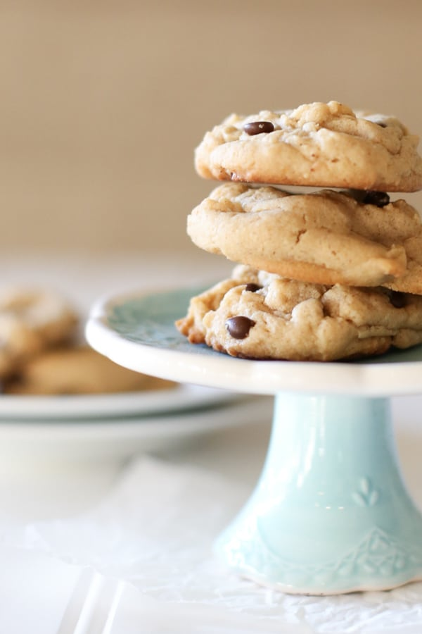 National Picnic Month -peanut butter chocolate chip cookies-1
